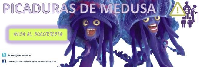 picadura.de.medusa