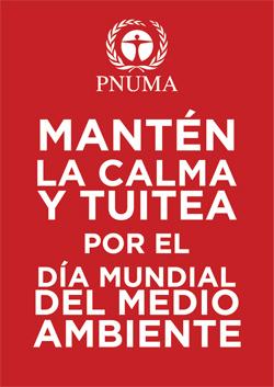 keep_calm_po2-copia