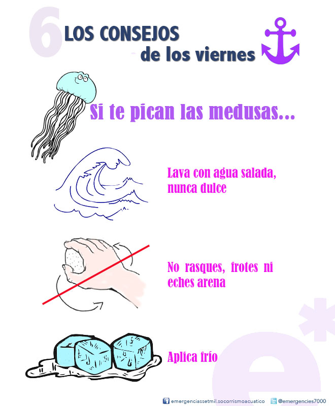 consejos-de-tu-socorrista-medusas