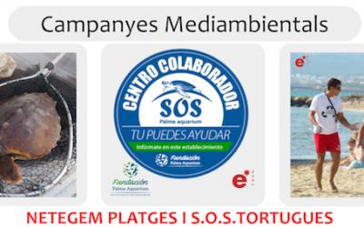 Netegem platges i SOS tortugues